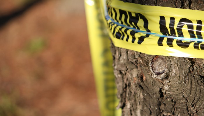 Chicago Murder Attorney | Illinois Homicide Lawyers